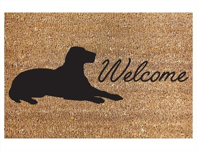 Dog Welcome Door Mat 40x60cm