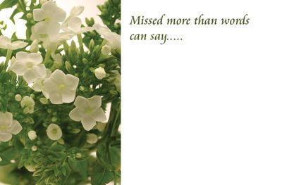 Missed More Than Words Can Say Sympathy Card
