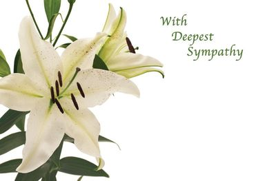 With Deepest Sympathy White Lillies Cards