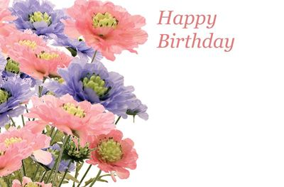 Happy Birthday Scabious Greetings Card