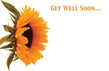 Get Well Soon Sunflower Greetings Card