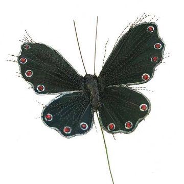 Black Glitter Spray Butterfly