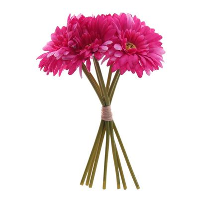 Cerise Gerbera Bunch