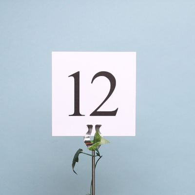 Square Table Numbers (1-12)