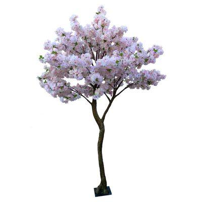 Pink Blossom Tree (2.7m)