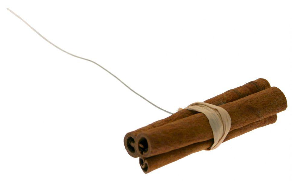Cinnamon Sticks on Wire (x3)