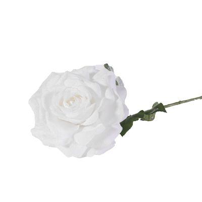 67cm Single Madonna Rose
