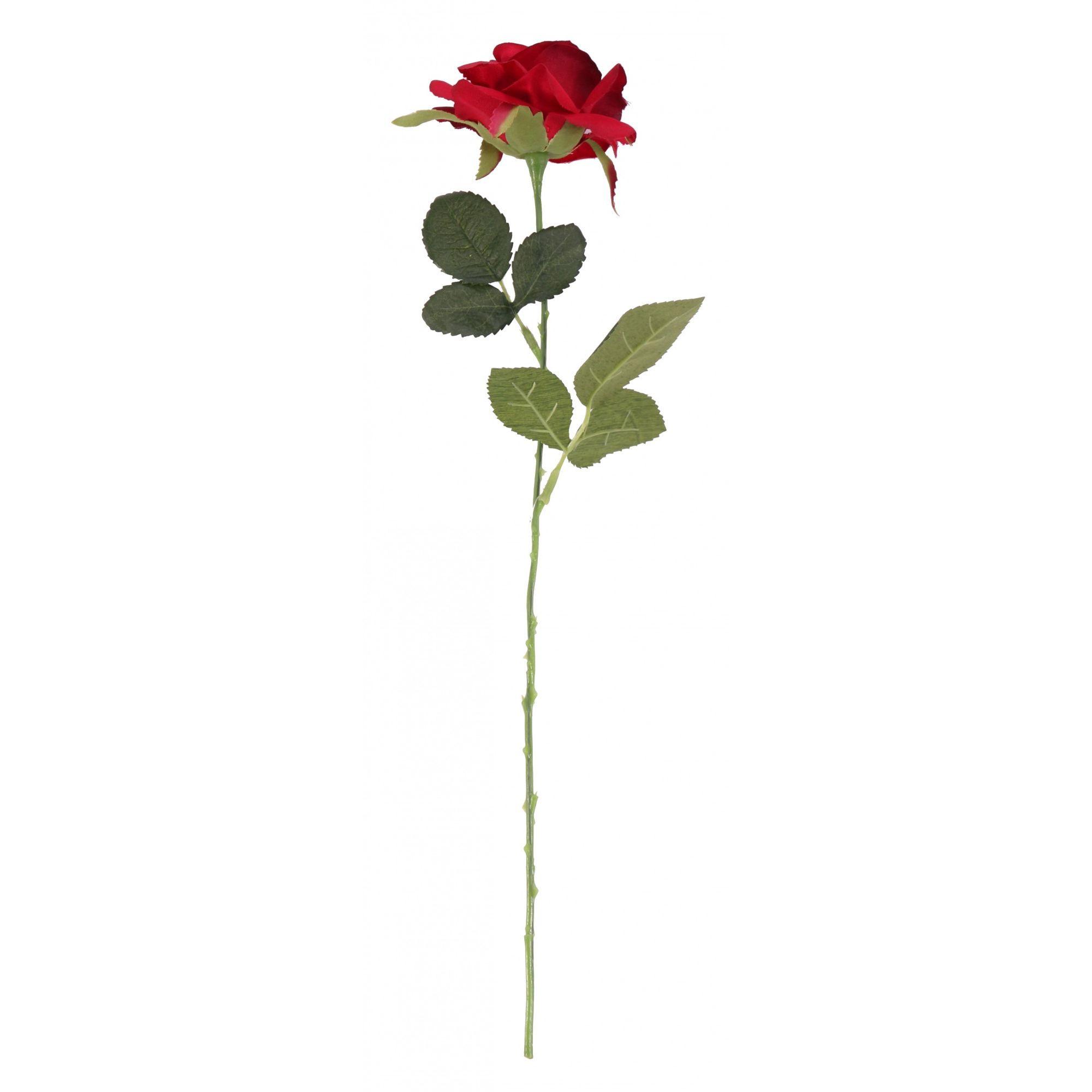 Red Richmond Rose 42cm