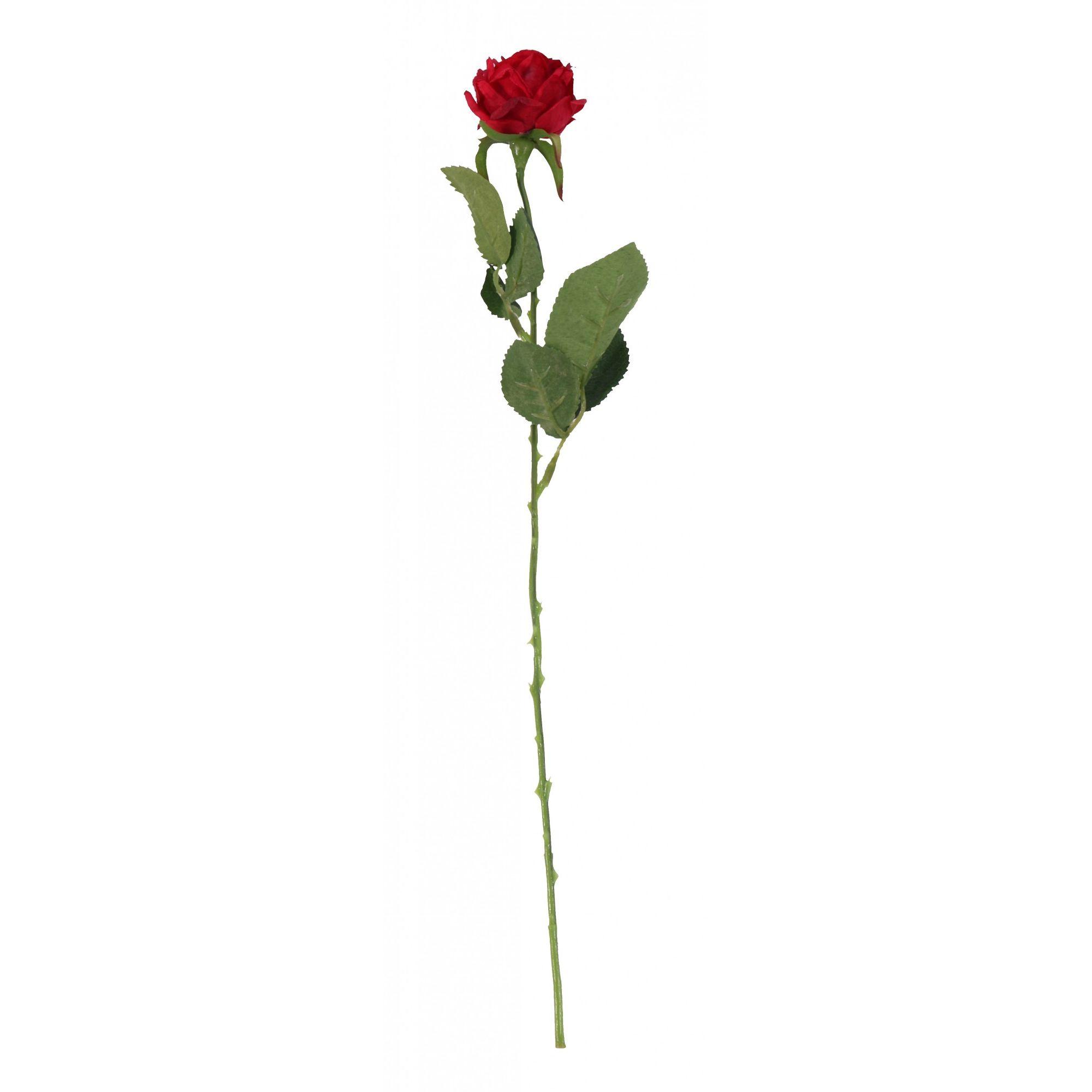 Red Diamond Rose 61cm