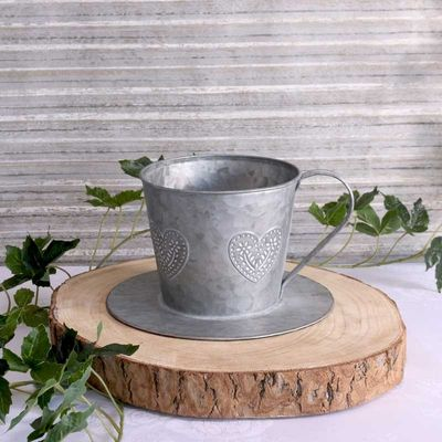 Cup and saucer Planter