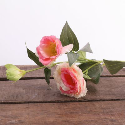 Lisianthus Spray Pink