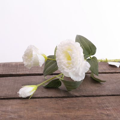 Lisianthus Spray White