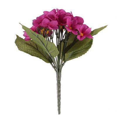 Mauve Violet Plant