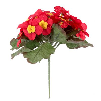Red Primula x25 Flowers