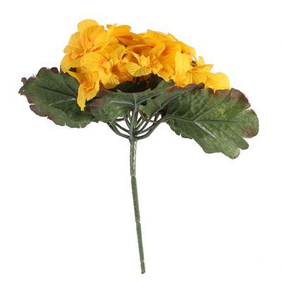 Yellow Primula x25 Flowers