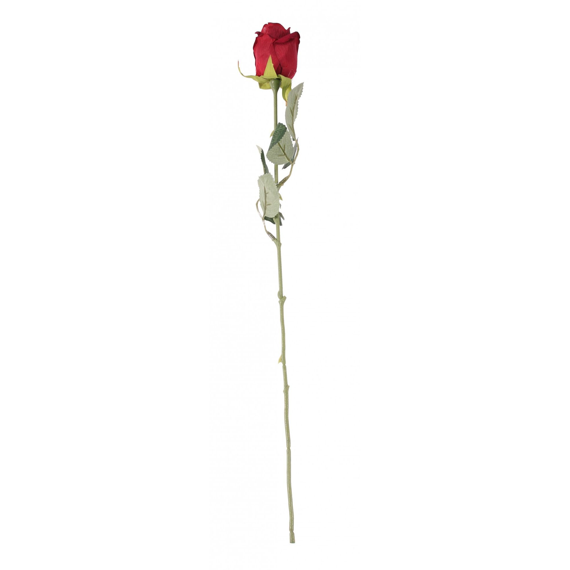 Red Rose Stem 56cm