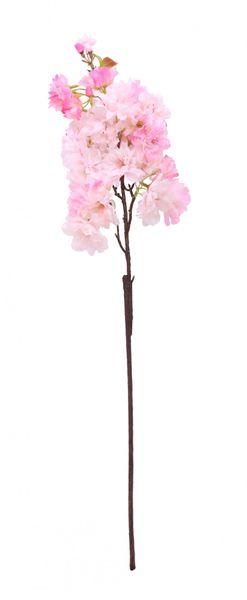 Pink Apple Blossom Stem