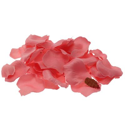 Baby Pink Rose Petal Confetti