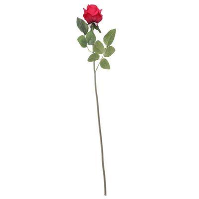 Arundel Rose Bud Red (24/240)