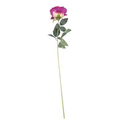 Arundel Rose Mauve (24/192)