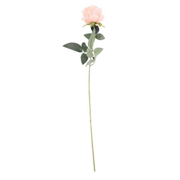 Arundel Rose Peach (24/192)
