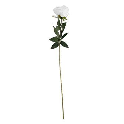 Arundel Rose White (24/192)