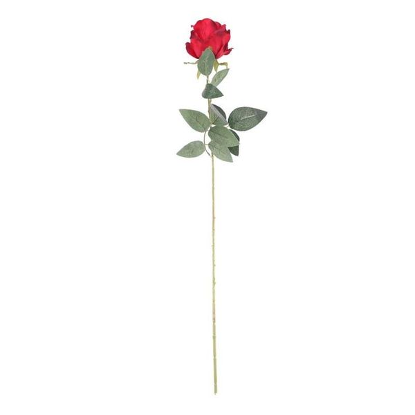 Arundel Rose Burgundy (24/192)