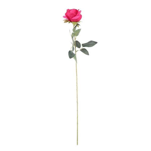 Arundel Rose Fuchsia (24/192)