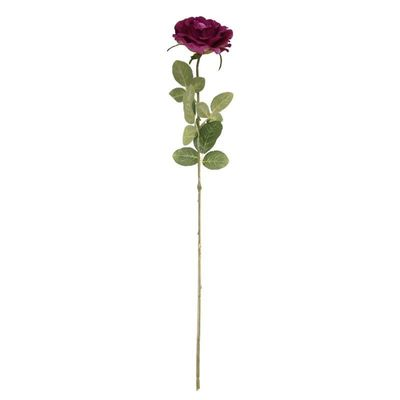 Arundel Open  Rose Mauve (24/192)