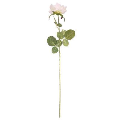 Arundel Open  Rose Cream (24/192)