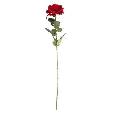 Arundel Open  Rose Red (24/192)