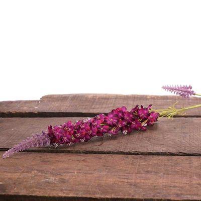 Veronica Spray Lavender (24/480)