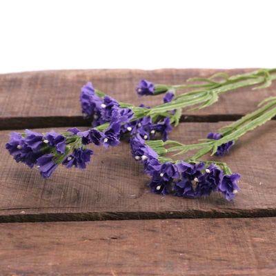 Statice Spray Purple (36/432)