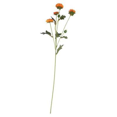 Buckingham Spray Chyrsanthemum Orange (12/384)