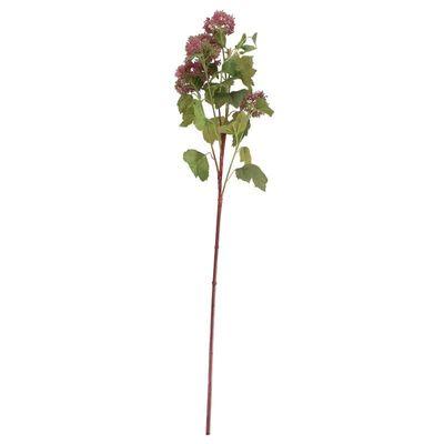 Viburnum in bud Spray Burgundy (12/96)