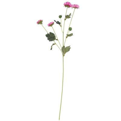 Buckingham Spray Chyrsanthemum Dk Purple (12/384)