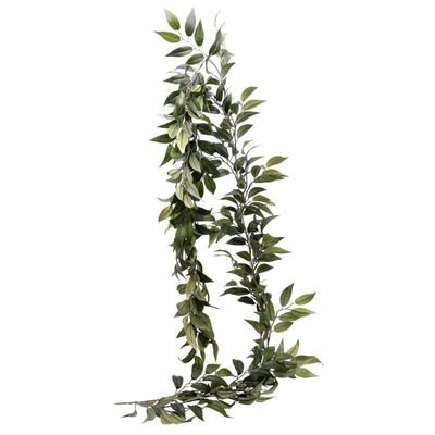 Ruscus Leaf Garland (6/60)