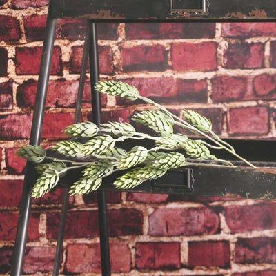 60cm Hops Spray Green (24/288)