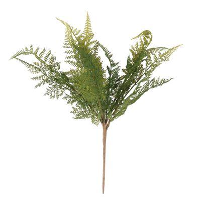 Fern Bush x 15 (12/288)