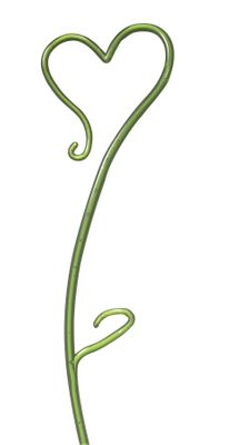 Orchid Stake Green (55cm)
