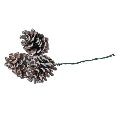 Set of 3 White Tipped Pine Cones