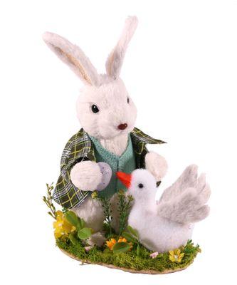 Display Rabbit Duck 14x22x33