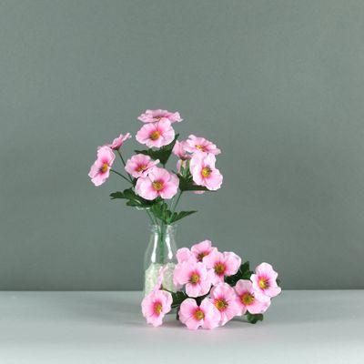 Pansy bush pink