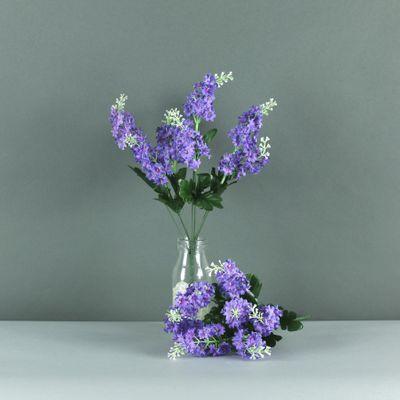 Lilac bush purple