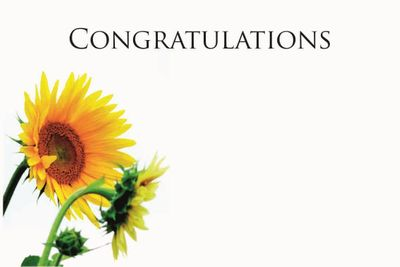 Congratulations Small Greeting Card (x50)