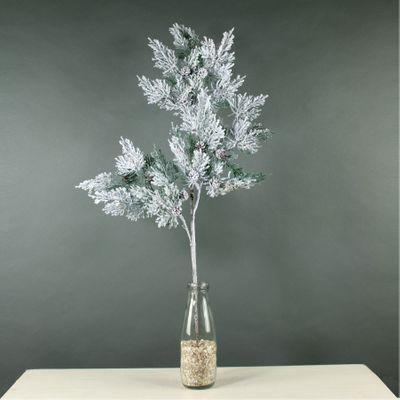 Snowy Pine Branch (24/192)