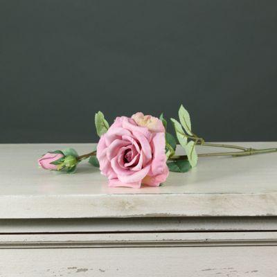 Tintagel Spray Rose Dark Pink(24/240)