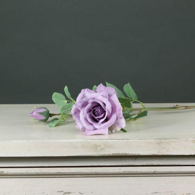 Tintagel Spray Rose Lavender (24/240)