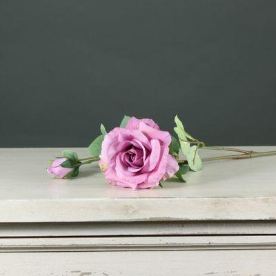 Tintagel Spray Rose Mauve (24/240)