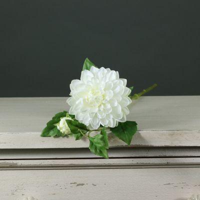 Tintagel Spray Dahlia White (12/144)